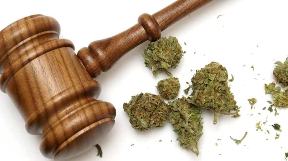 a legalização da maconha na justiça